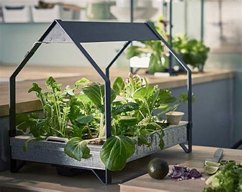 ikea just launched an indoor garden that never stops
