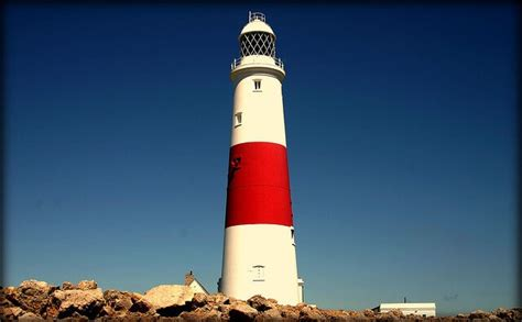 light house insurance professional photographer insurance portland bill policybee