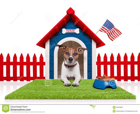 dog from full house dog house stock image image 35943681