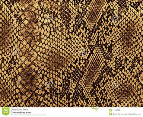 pattern stock photo free snake skin pattern stock photo image 17745690