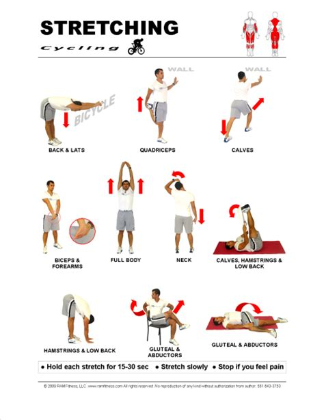 printable flexibility exercises stretching exercise chart car interior design