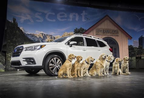 la dogs all new 3 row subaru ascent makes world debut at los angeles auto show 174 with dogs