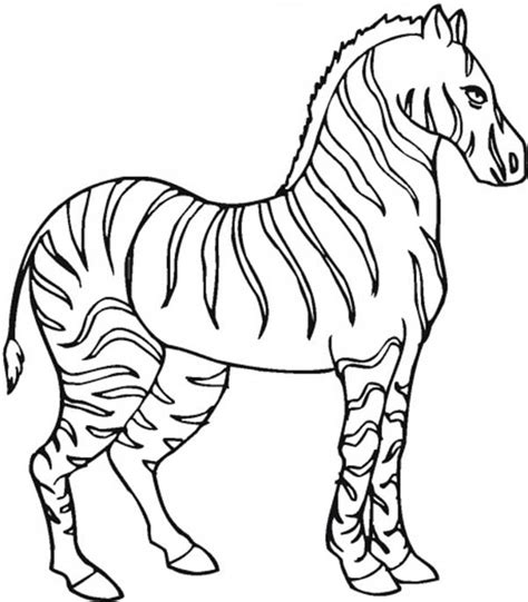 Coloring Page Zebra by Zebra Coloring Pages