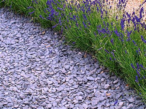 ghiaia per giardini ghiaia per giardino 25 idee per realizzare spazi esterni