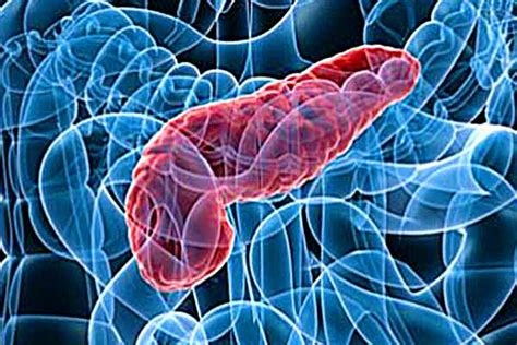 pancreatite dieta alimentare images foto articoli alimentazione diete pancreas