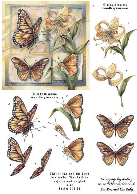 Butterfly Decoupage - 112 best images about 3d butterflies on