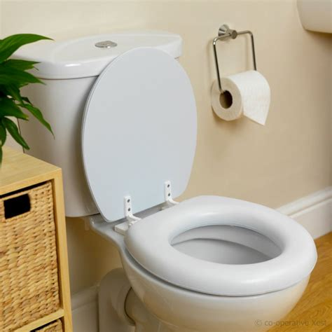how to change colored toilet seats the homy design