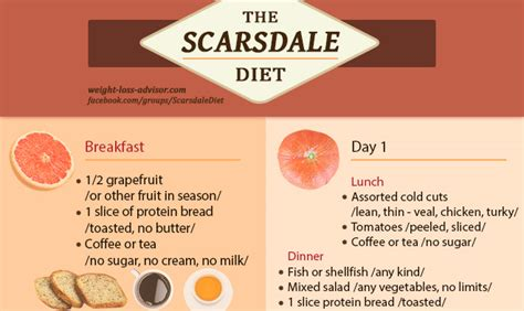 printable version of scarsdale diet scarsdale diet infographic day 1 to day 7 weight loss