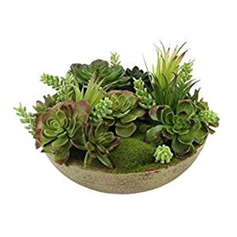 amazon succulents amazon com southwestern mixed green potted artificial