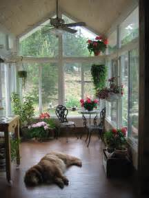 interior design design homes decor ideas dogs sunrooms