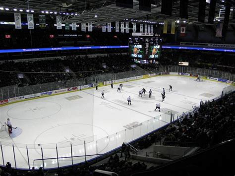 Budweiser Gardens by What Makes An Ohl Franchise Successful Qnetnews Ca