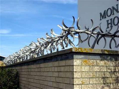 garden wall spikes garden ftempo