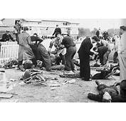 Dead And Injured In The Grandstands After Accident