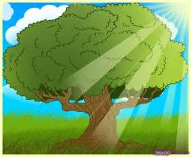 how to draw an oak tree step by step trees pop culture
