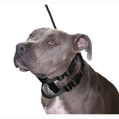 cesar millan collar cesar millan whisperer illusion collar leash set next generation large blk ebay