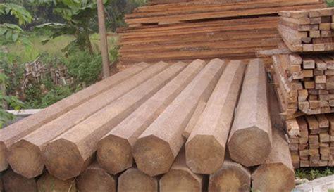 kerajinan membuat rumah dari kayu kerajinan kayu kelapa dari limbah menjadi uang all around us