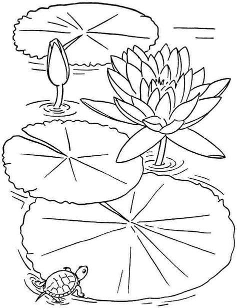 coloring pages of lotus flowers printable coloring pages lotus flowers coloring home
