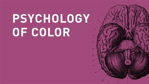 colors agency the psychology of color in branding