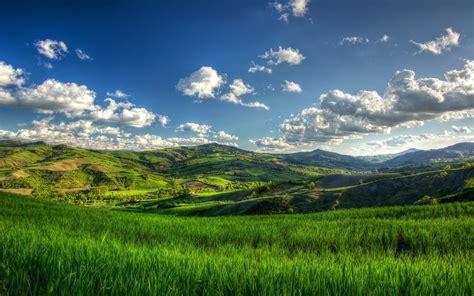 imagenes verdes paisajes banco de im 193 genes colinas bajo el sol sunny green hills