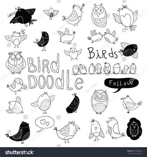 doodle bird free vector bird doodle set vector illustration stock vector 212633860