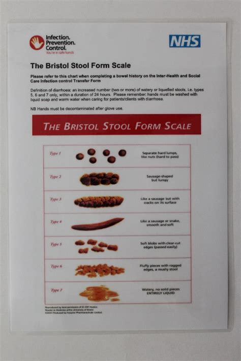 Bristol Stool Scale Poster by Viral Gastroenteritis Bristol Stool Form Scale Poster