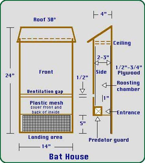 bat house plans pdf build a bat house nature pinterest bat house plans bats and google search