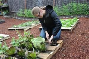 How To Make Vertical Garden - 10 pallet gardening ideas pallets designs
