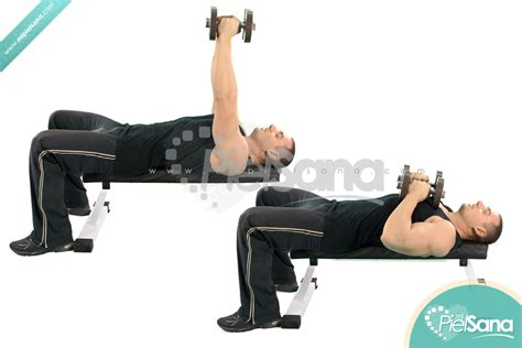 close grip bench press with dumbbells close grip dumbbell press www imgkid com the image kid