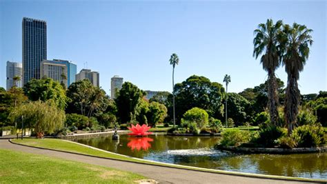 Royal Botanical Gardens Sydney Trip Guide For Royal Botanic Garden Travel Places 24x7