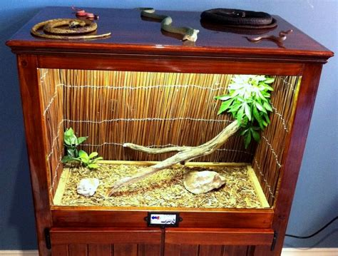 Reptile Cage Decor by Arieltehperson