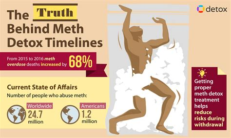 Meth Detox Program by Feb 1 About Meth Detox Section 1