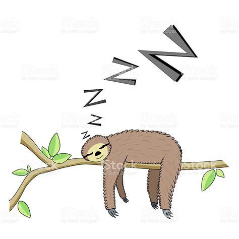 löffelchen schlafen comic schlafen faultier stock vektor und mehr bilder
