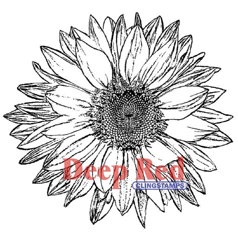 sunflower rubber st cling st 3 25 x 3 25 large sunflower 130958