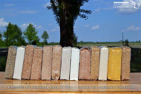 alimentazione ricca di fibre i benefici di una dieta ricca di fibre e cereali per