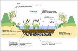 Clean Water Act Section 401 Summary by Shiloh Conservation Area Geum Environmental Consulting Inc