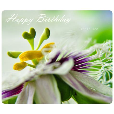wonderful birthday  flowers ecards greeting cards