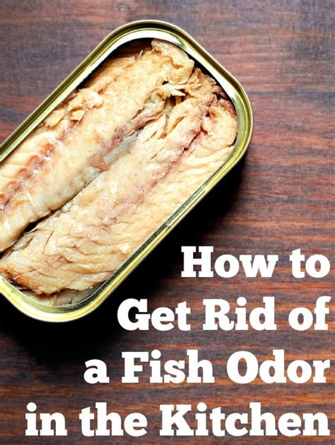 how to get rid of fish odor in the kitchen