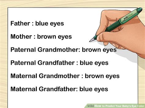 eye color predictor chart how to predict your baby s eye color 12 steps with pictures