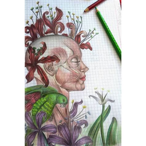 cuaderno de anatoma para caratula de biologia dibujo draw drawing art colorful artwork cumplea 241 os 16