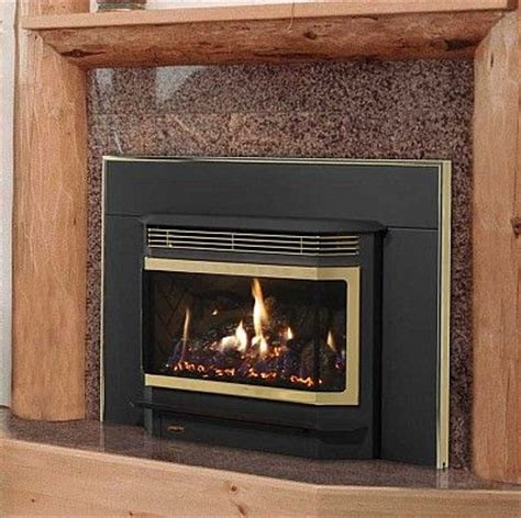 Coast Fireplaces by 17 Best Images About Gas Inserts On Stove