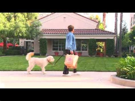 cherry orchard apartment homes for rent in sunnyvale ca