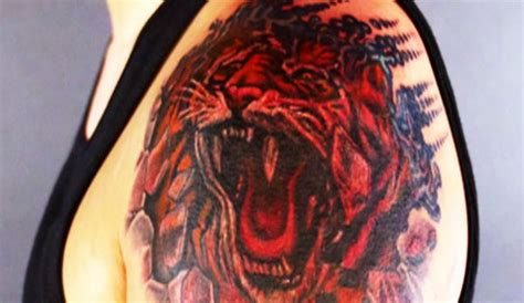 tattoo nightmares shop the tiger king of all tattoos nightmares spike
