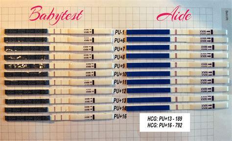 ssw test ab wann blastozystentransfer wann kann testen