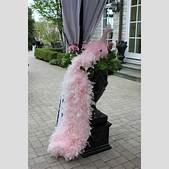 Ornamental pink...