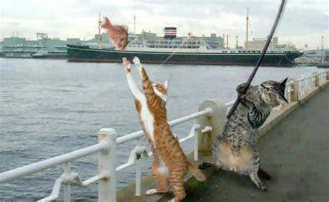 Katrol Pancing Yang Bagus seniorennet grappig of schattig we zijn gaan vissen