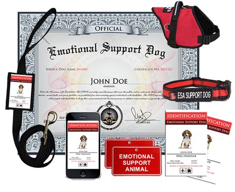 emotional support registration esa certificate pics about space