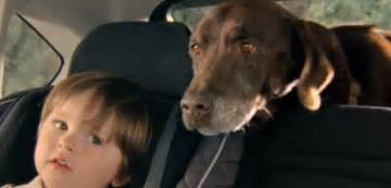 Subaru Lab Commercial The Labrador Has Subaru Beat On Loyalty It S A