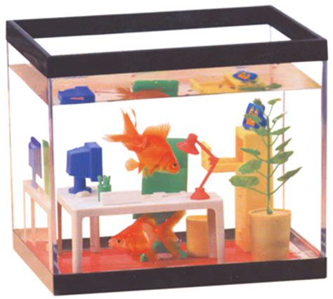 Office Fish Tank by Office Fish Tank Workvitamins