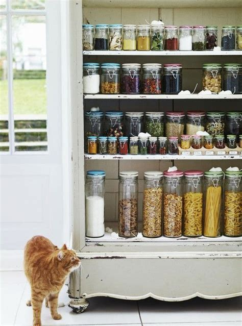 a well organized beautiful pantry interior home design