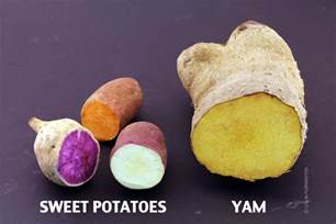 sweet quot potatoes quot recipe dishmaps